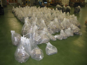 £100 million of cocaine hidden in banana pulp seized