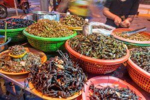 Yenilebilir böceklere talebin artması salgın ve istila tehlikesini beraberinde getiriyor