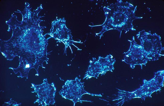 Beta bloklayıcı ilaçlar, uyuyan kanser hücrelerinin 'aktifleşmesini önleyebilir'