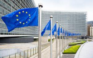 Avrupa Parlamentosu, Uygurlara yönelik muamele nedeniyle AB'den Çin'e yaptırım istedi