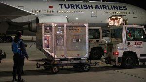 İkinci parti 6,5 milyon doz CoronaVac aşısı Türkiye'ye ulaştı