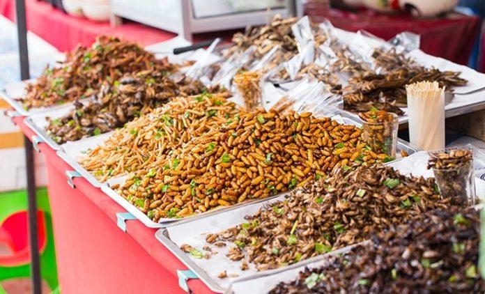 """Avrupa Gıda Güvenliği Kurumu: """"Böcekler yenebilir"""""""