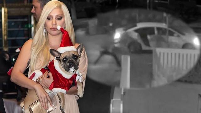 Lady Gaga'nın silahlı kişiler tarafından kaçırılan köpeği bulundu