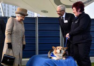 Morali bozulan Kraliçe II. Elizabeth'e iki yavru köpek hediye edildi