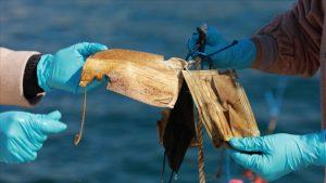 Türkiye'de denizlerden 11 ton maske ve eldiven toplandı