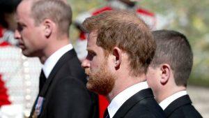 Prens Harry TV programından utanç duyuyor