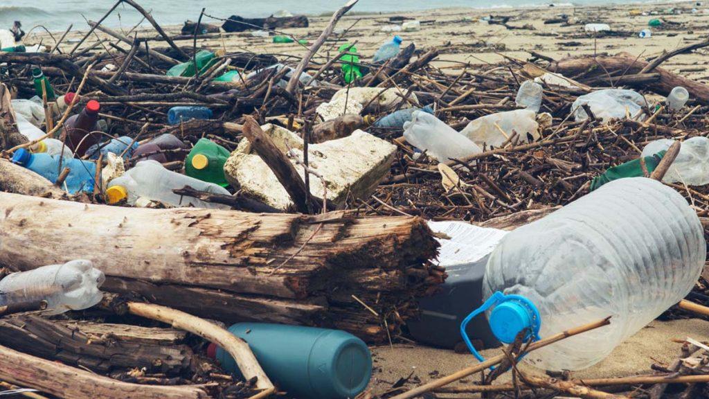 Greenpeace'den çarpıcı plastik atık raporu