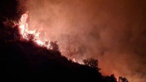 Güney Kıbrıs'taki yangın ölüme neden oldu, acil durum ilan edildi