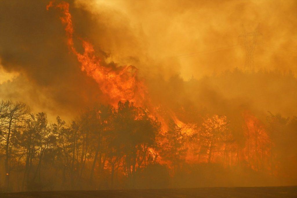 Türkiye'de yangınlar: 7 ilde çıkan yangınlarda 3 kişi hayatını kaybetti, söndürme çalışmaları sürüyor