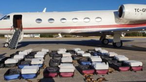Brezilya polisi, bir İspanyol tarafından kiralanan Türk şirkete ait uçakta bir ton kokain ele geçirdi