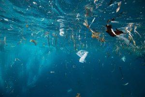 Okyanuslarda 1,6 milyar adet maske yüzüyor