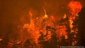 Britanya Alevi Federasyonu'ndan yangın mağdurları için yardım kampanyası